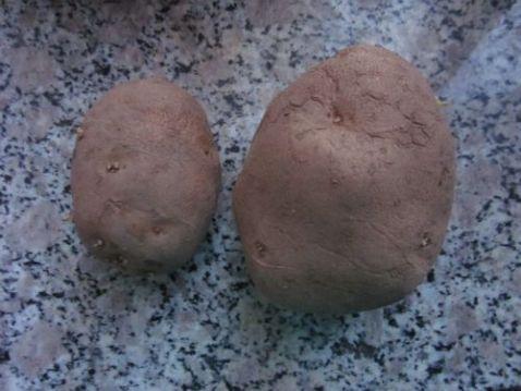 土豆挂浆的做法大全