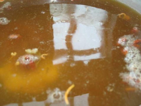 花胶虫草花百合骨汤的简单做法