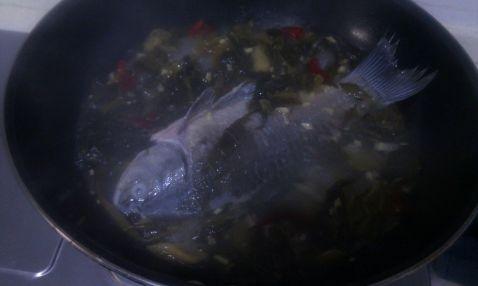 酸菜鲫鱼怎么炒