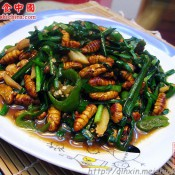 韭菜炒蚕蛹