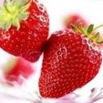 """多吃草莓 """"春季第一果"""""""