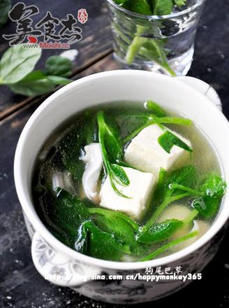 豌豆尖蘑菇豆腐汤的做法
