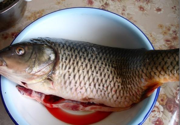 家常鲤鱼的做法大全