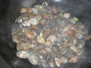 炒花蛤的家常做法