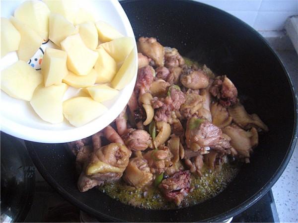 鸡肉炖土豆怎么做