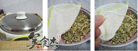 自发绿豆芽怎么炒