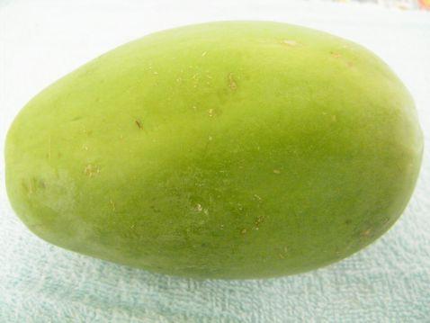 木瓜炖排骨的做法大全