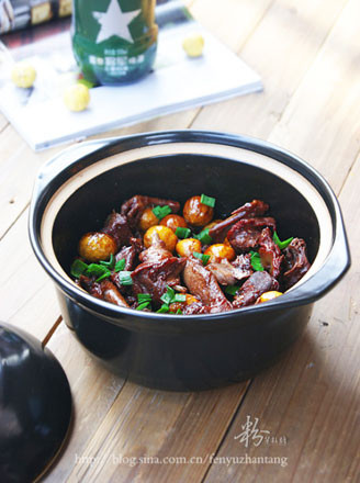 栗子鸽肉煲的做法