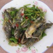 辣椒炒黄骨鱼