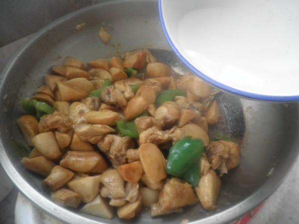 杏鲍菇烧鸡块怎样煮