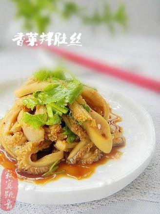 香菜拌牛肚丝的做法