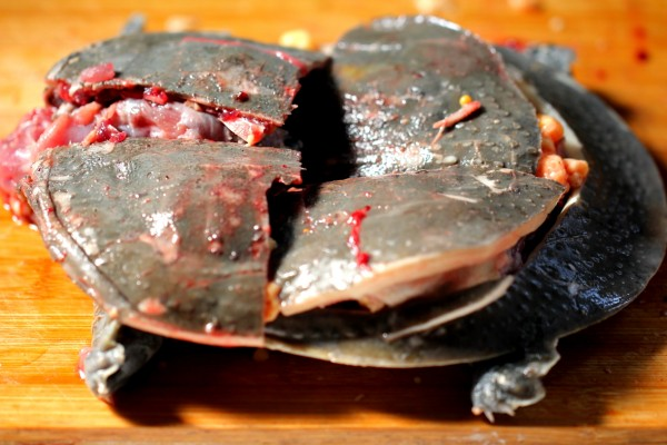 红烧元鱼的做法大全