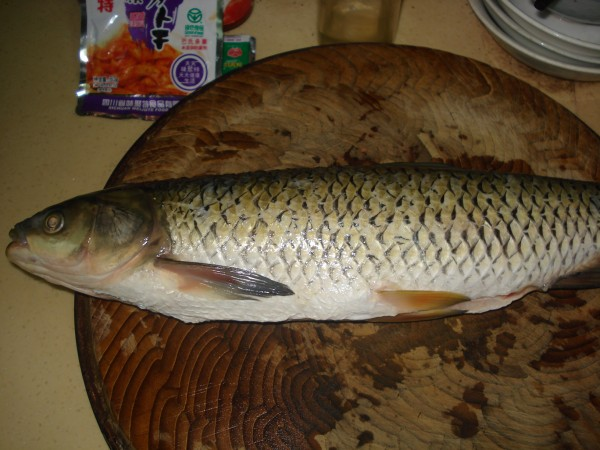 鱼划水煮绿豆粉丝的做法大全