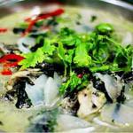 青椒紫苏煲鮠鱼