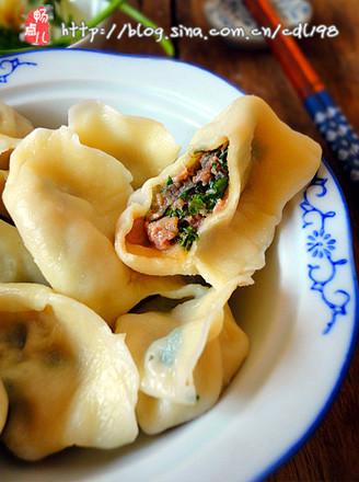 牛肉芫荽水饺的做法