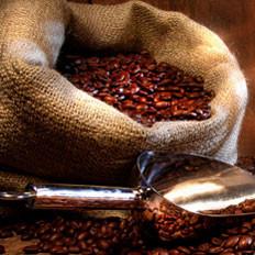 牧羊人发现咖啡的传说