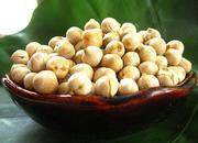 木垒鹰嘴豆