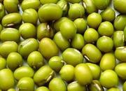 环县小绿豆