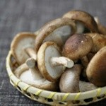 """蘑菇""""驻颜术"""""""