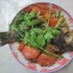 西紅柿燒鯽魚