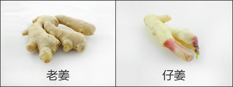 姜的对比.jpg