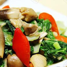 鲍汁草菇幼白菜