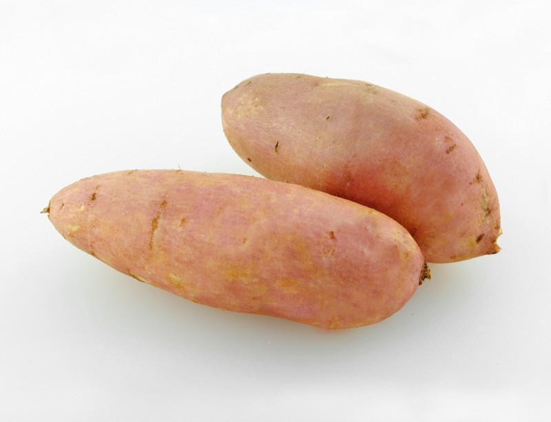 红薯800.jpg