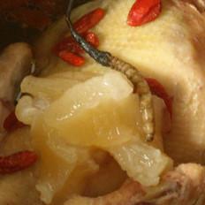 花胶虫草鸡汤