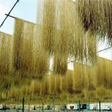 迁安合金粉丝厂所产粉条铝超标