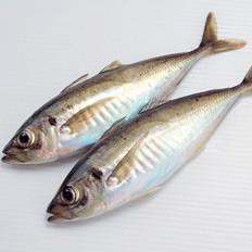 鱼身上几个部位绝不能吃