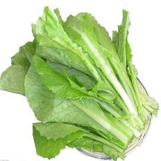 小白菜营养价值远高于大白菜