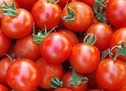 樱桃西红柿