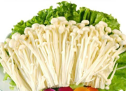 沙洋金针菇