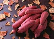 张武岗红薯